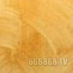 点击查看湖南液体壁纸钻彩纹漆详细说明