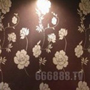 点击查看湖南液体壁纸钻石壁纸漆详细说明