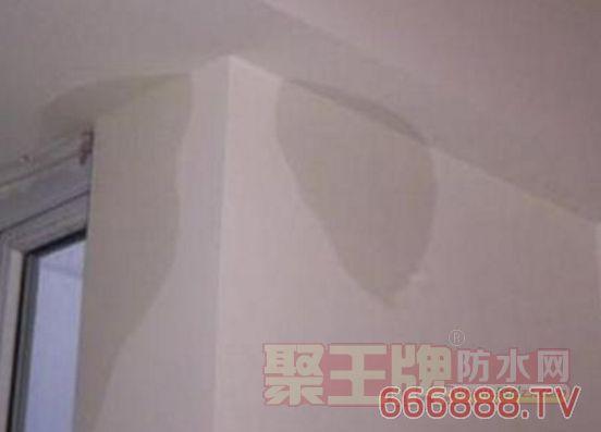 屋面 女儿墙、山墙漏水图片