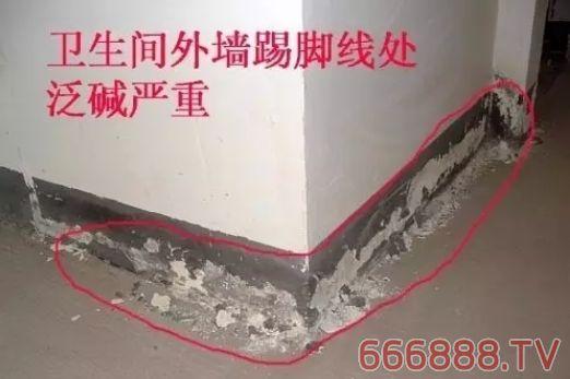 这样做,外墙涂料不再泛碱!