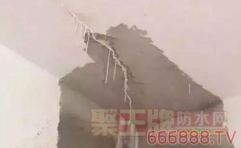 房顶房顶渗水、漏水怎么办?如何根治!