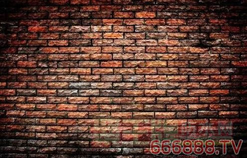 Mortar Sentry——砖墙防水专家