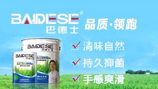 广东巴德士化工有限公司招商形象广告图片